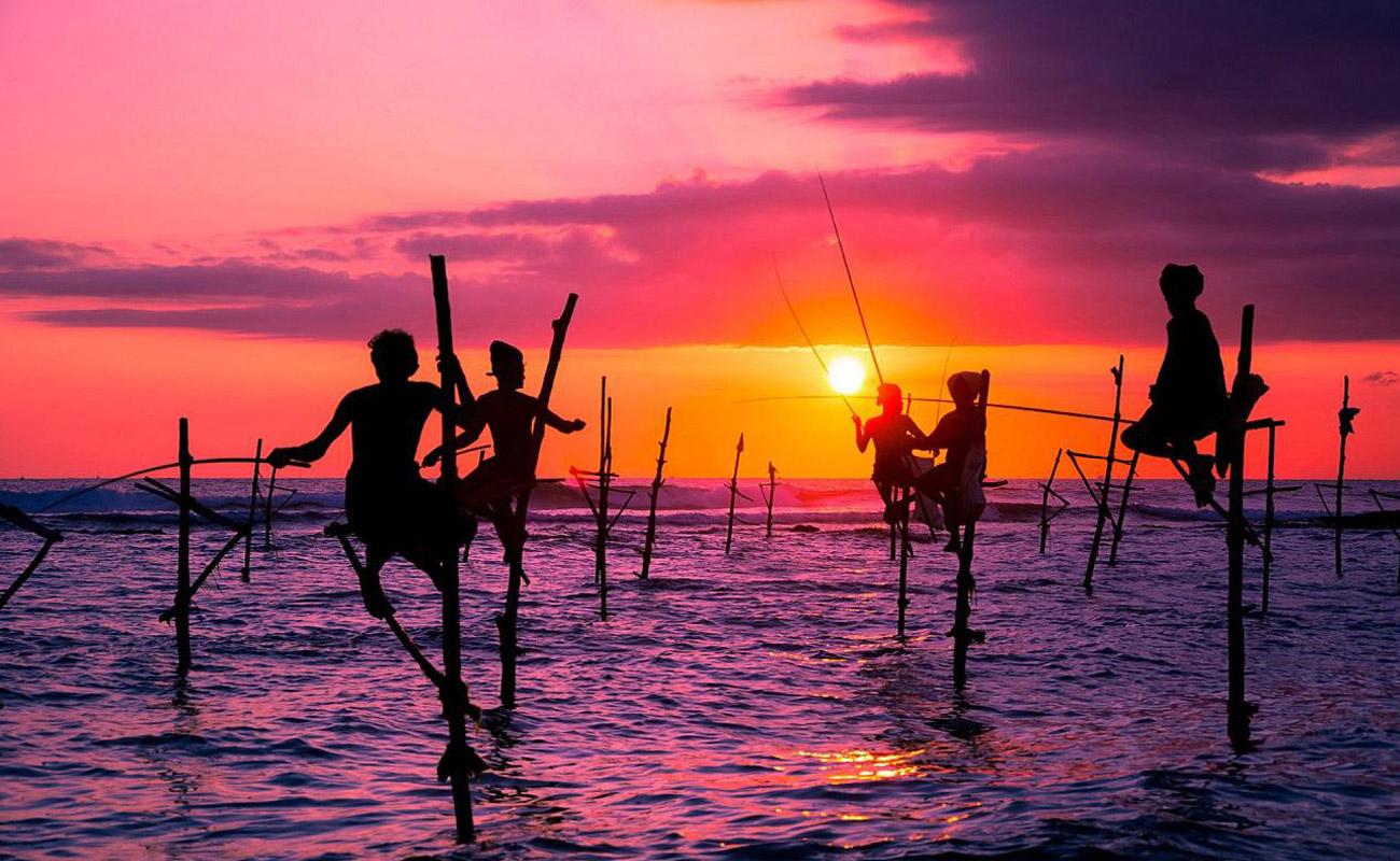 Zeldiva Luxury | Sri Lanka